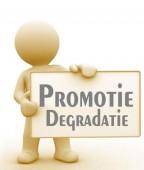 Promotie Degradatie