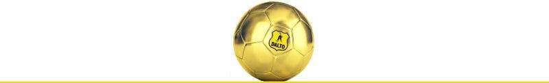 Dalto sponsoring wedstrijdbal