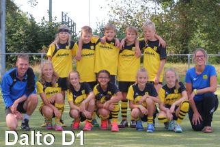 Teamfoto Dalto/Zhimble D1