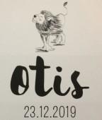 Geboortekaartje Otis Daltosite