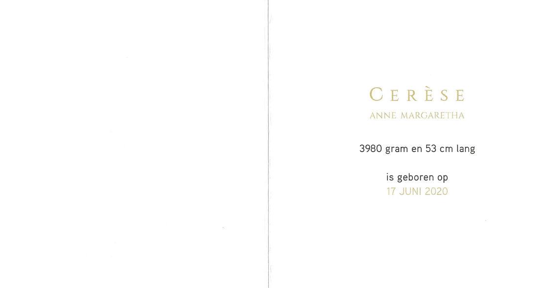 20200617 Geboortekaart Cerese Daltosite