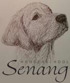 Hondenschool Senang bij Dalto