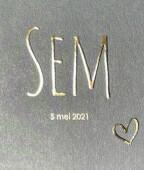 Geboortekaartje Sem